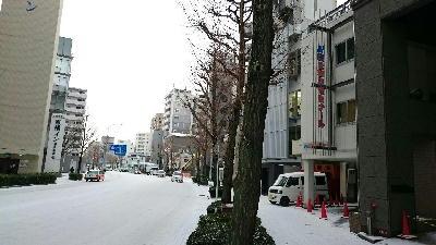 公ゼミの雪